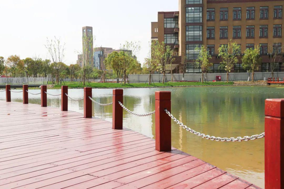 """""""海绵校园""""的设计运用小尺度景观设计手法,激活户外活动的功能结合水系景观、人文环境有机融合的建设理念,利用校园海绵城市示范项目,展开实验监测、生态实习和科普教育,打造""""海绵课堂""""   在校园核心绿地区域植入海绵元素,通过打造人工湿地、设置雨水花园、布置浅层"""