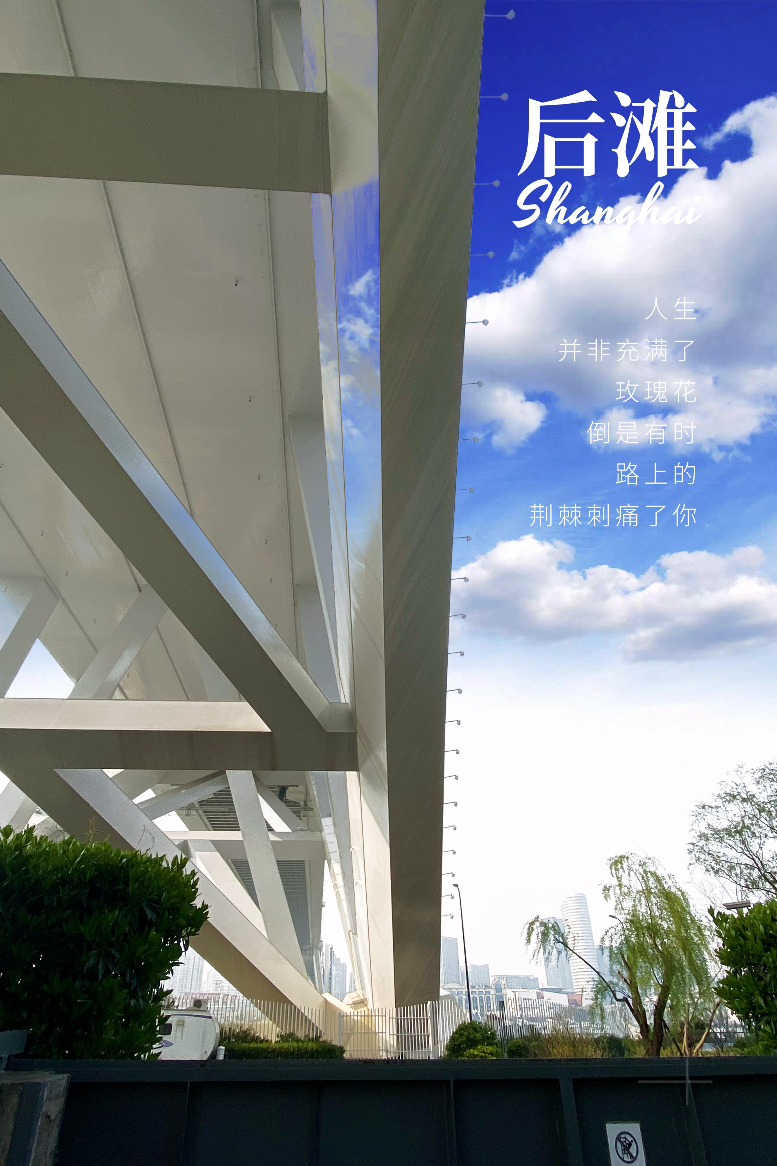 原创             没想到几千万人的上海,竟隐藏着如此世外桃源的地方,还不收门票