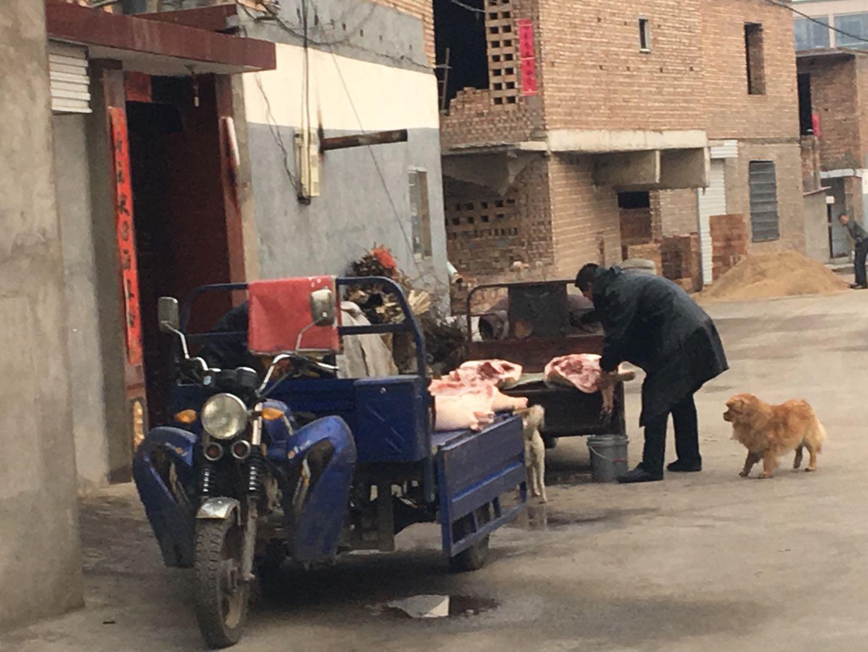 """山西兴县遍地都是""""白条猪"""",30万老区人吃不上放心肉"""