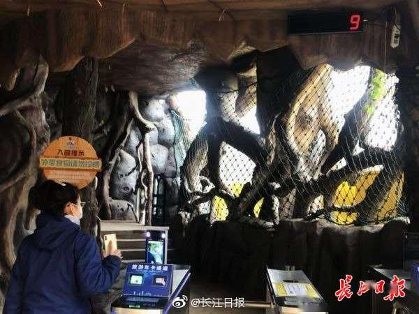 武汉东湖开放:游船上座率不高于30%