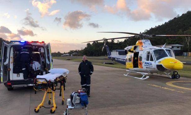澳72岁老人从近2米长食肉蜥蜴口中救下爱犬,身受重伤狗狗幸存