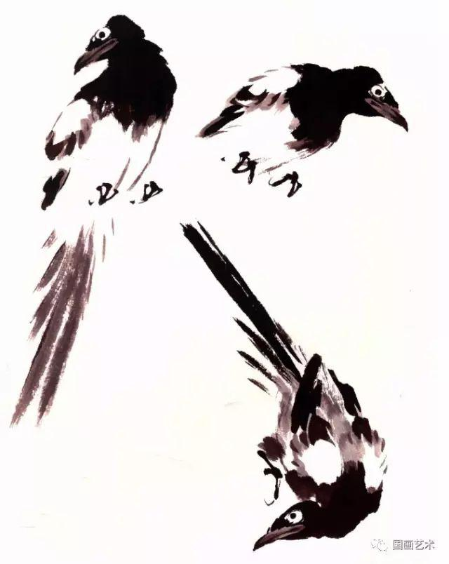 一学就会画写意喜鹊