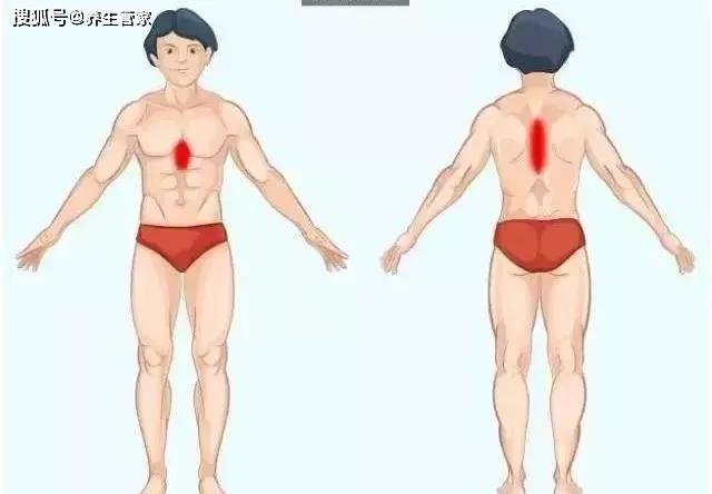 Ghi nhớ 9 bức ảnh giúp bạn nhanh chóng tìm ra nguyên nhân thực sự của cơn đau ở nội tạng - Ảnh 7.