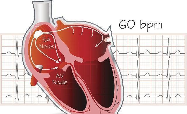 高鉀心脏停搏液的原理_高钾食物一览表图片