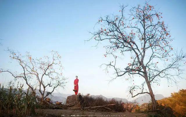 人像摄影:柿子红遍满山坡_造型