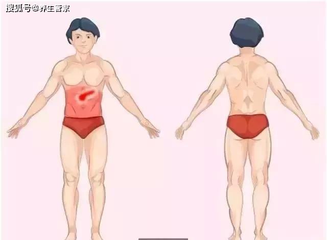 Ghi nhớ 9 bức ảnh giúp bạn nhanh chóng tìm ra nguyên nhân thực sự của cơn đau ở nội tạng - Ảnh 9.