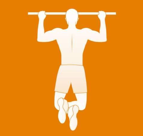 三种引体向上——正手、反手、对握,优劣势分别在哪里?