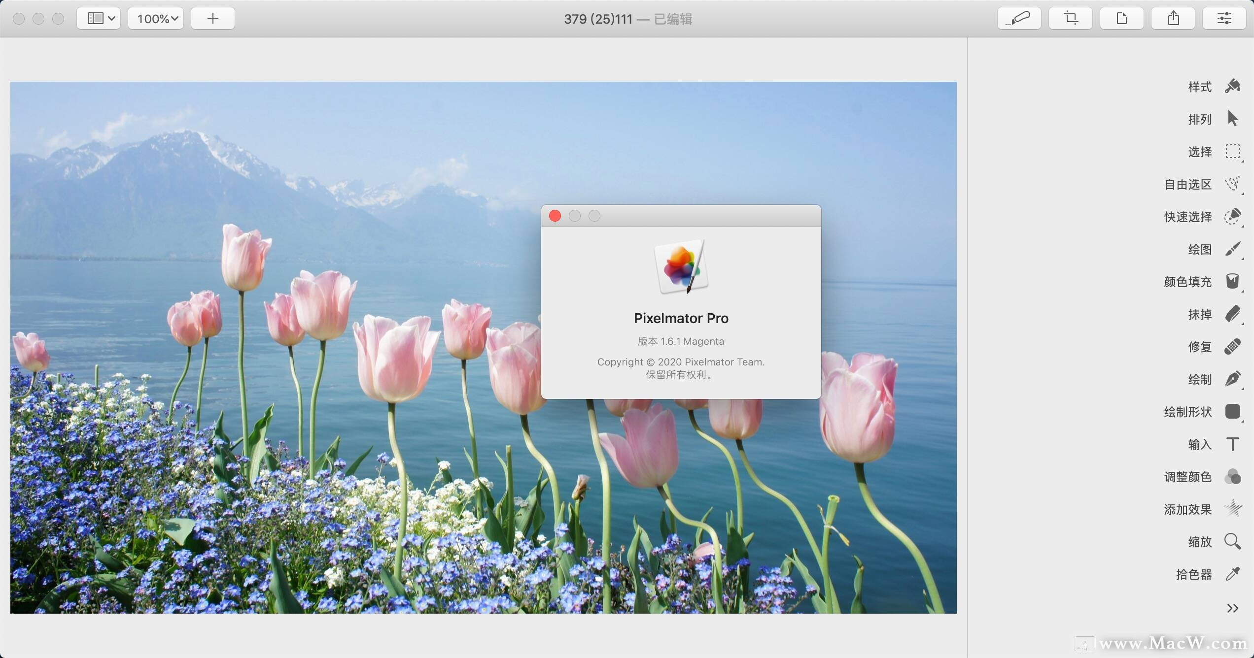 适用于Mac的Pixelmator Pro(可与ps媲美的mac修图软件)1.6.1中文激活版