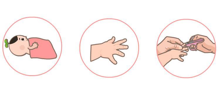 宝宝剪指甲的诀窍你掌握了吗