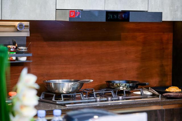 主动服务+健康烹饪 卡萨帝厨电以场景优势获2项艾普兰奖