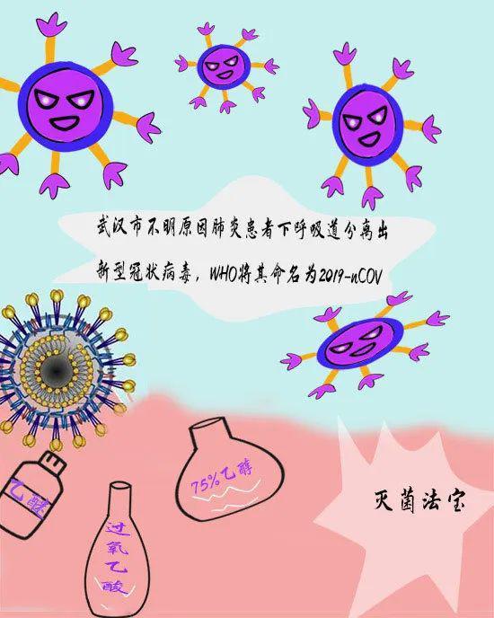 """【科普】冠状病毒""""族谱""""曝光 这些防控要点,每一条都很重要!图片"""