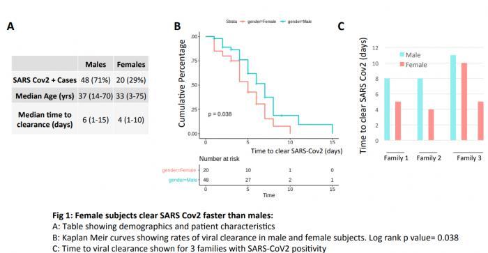 医生发现男性患者更容易发展成新冠重症病例的可能原因