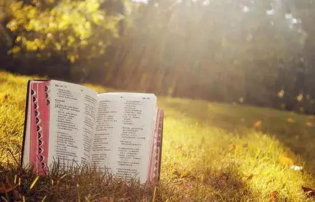 世界读书日!教育部首次发布中小学生阅读指导目录