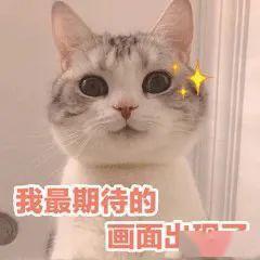 看了刘亦菲和蔡卓宜的苹果肌,我决定不再低估这块脂肪!