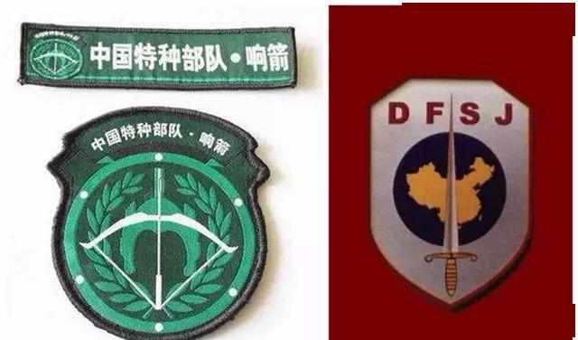 中国十大特种部队及其专属臂章,你喜欢哪一个图片