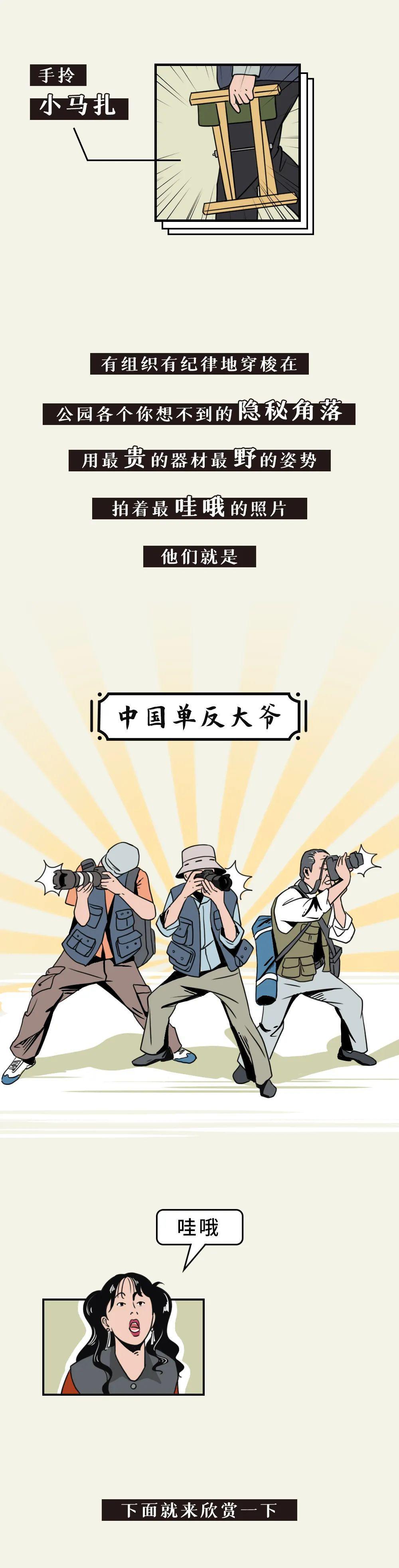 中国单反大爷:站在摄影鄙视链顶端的王者