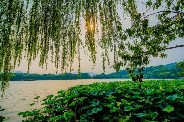 中国最美春色城市_中国春天,最美的11个瞬间!_热点新闻网