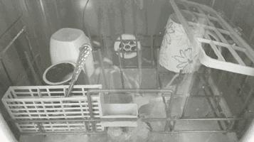 daogrs是什么品牌?意大利进口洗碗机卫星喷雾强大!