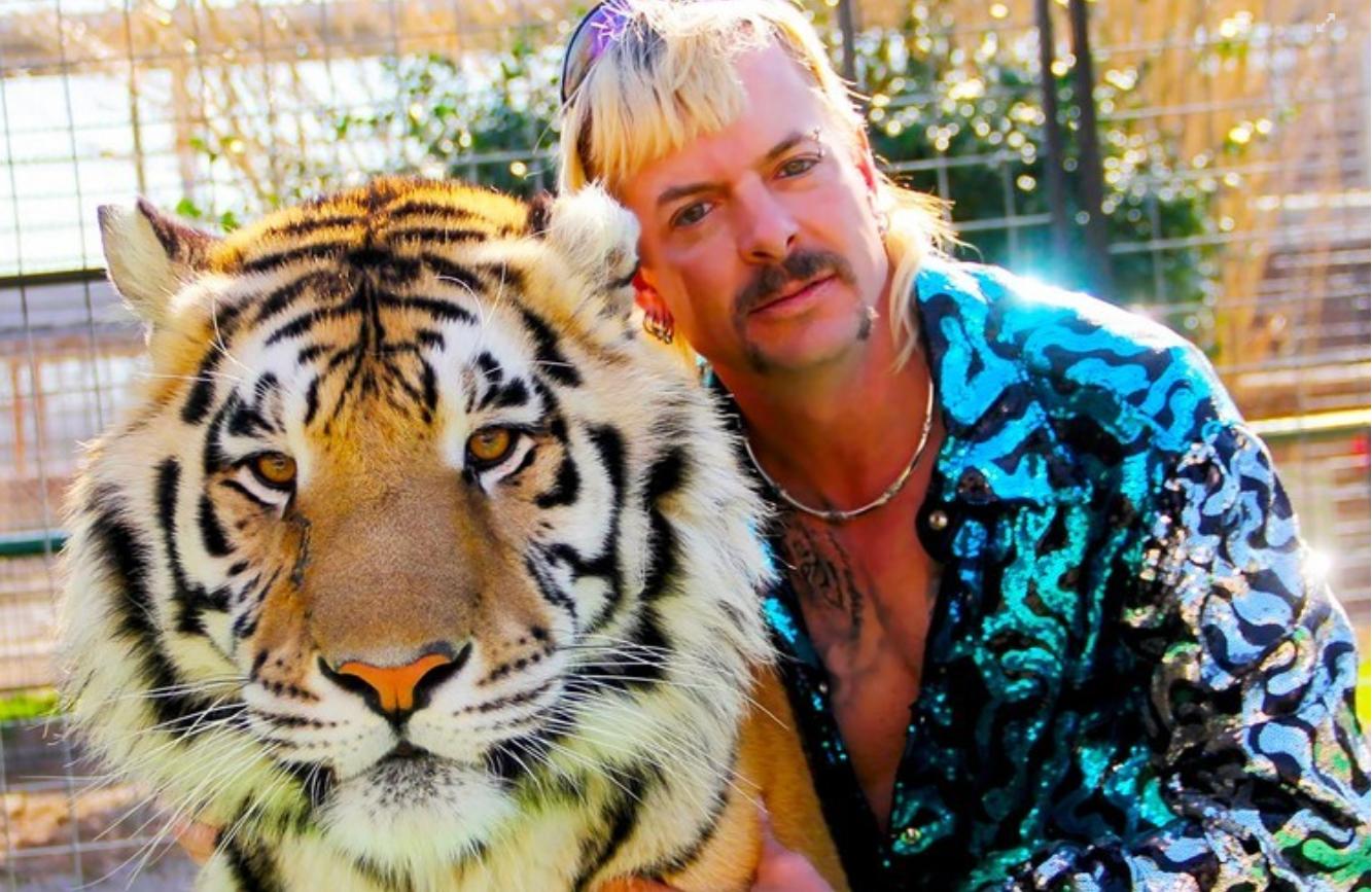 原创欲望与野性的交汇,动物纹的时尚碰撞,一场大型的动物狂欢正在进行