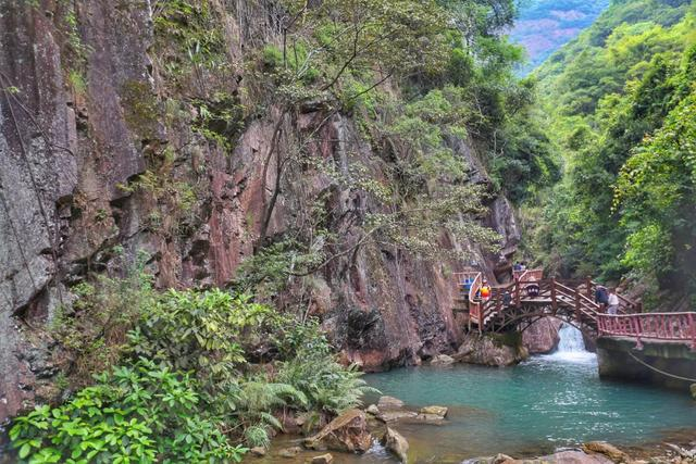 原创             走进绿色亲近自然,去增城来一次森林浴