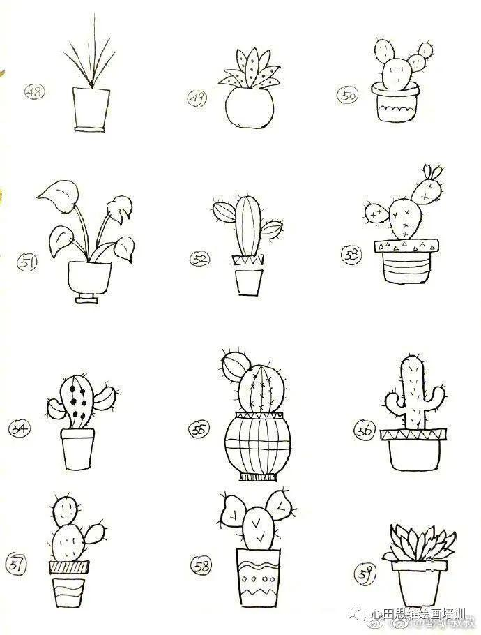 黑白简笔画植物素材,都在这啦