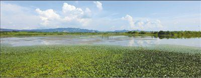 湖南岳阳市立法保护东洞庭湖 一泓清水 细管长护