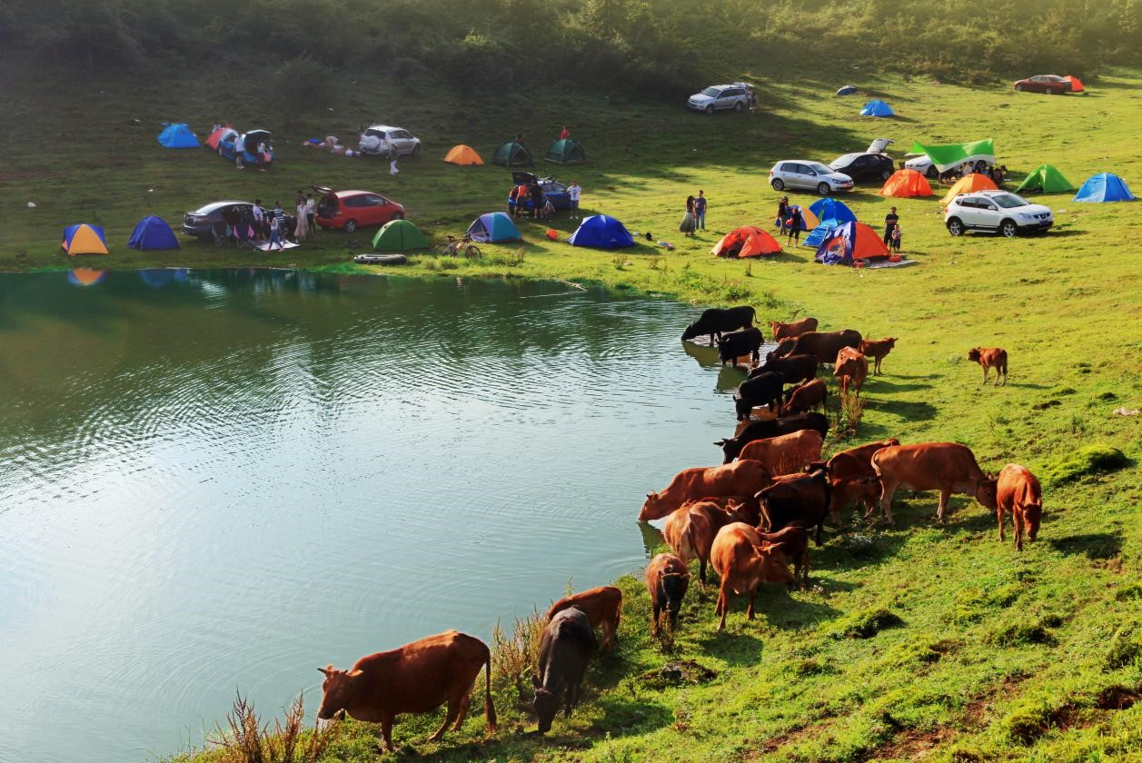 五一节重庆武隆旅游最全攻略,这里遛娃露营不扎堆!