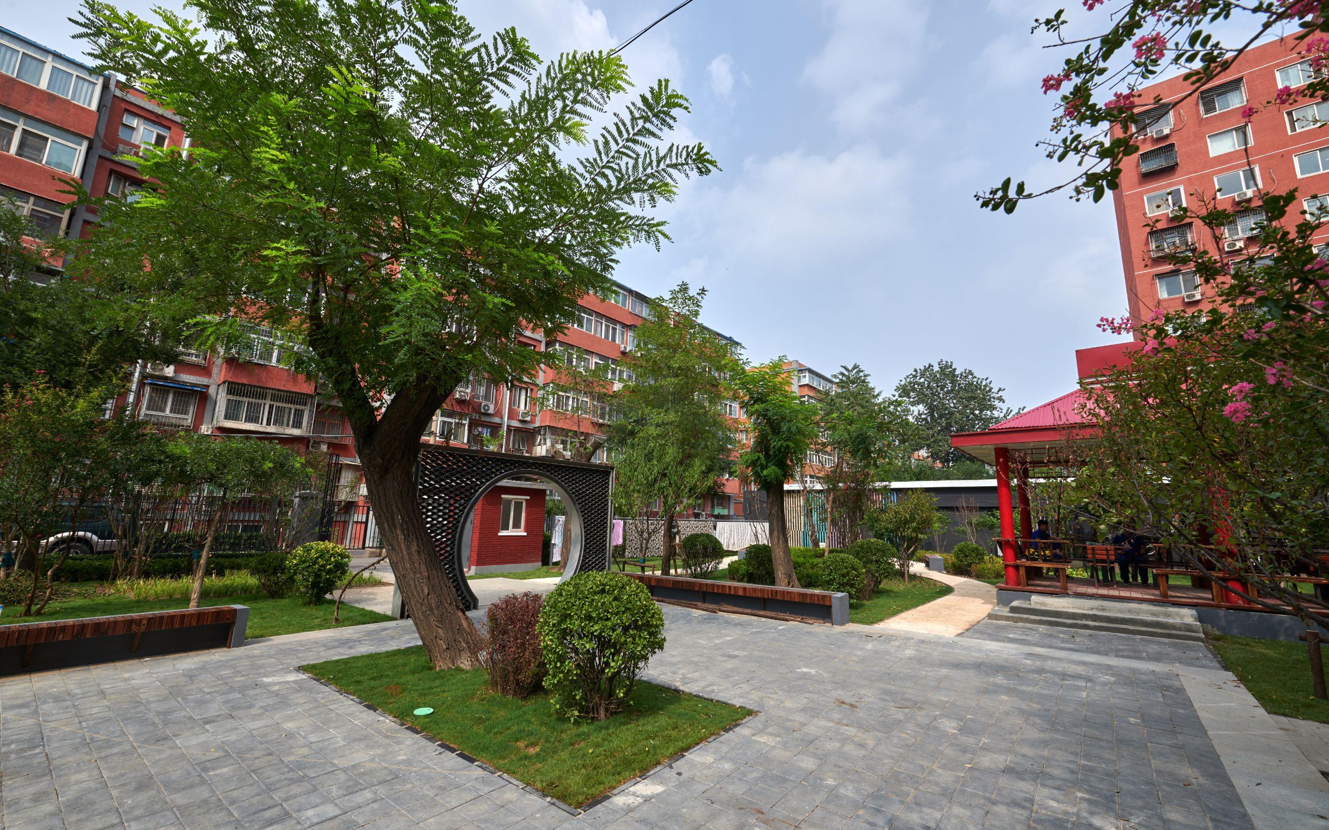 引社会资本参与改造劲松一小区建了小公园、开起便民店