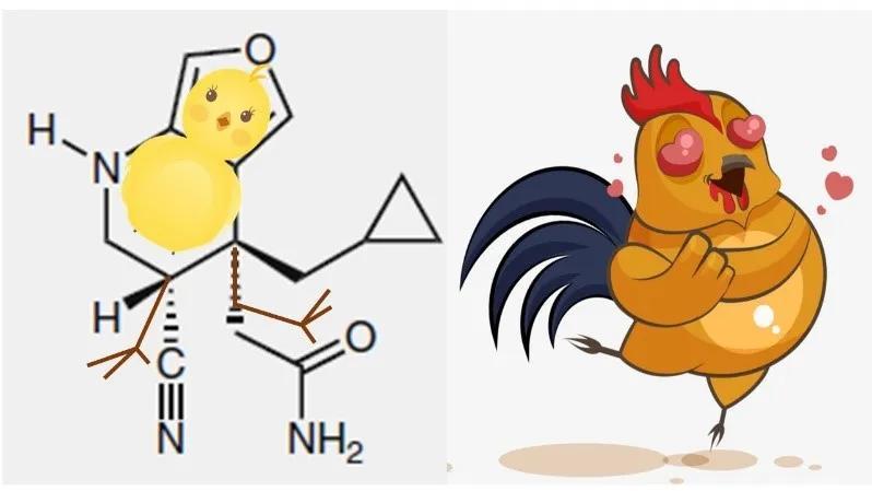 7岁丹麦小姑娘Filucca在顶级化学期刊Nature Chemistry发表文章