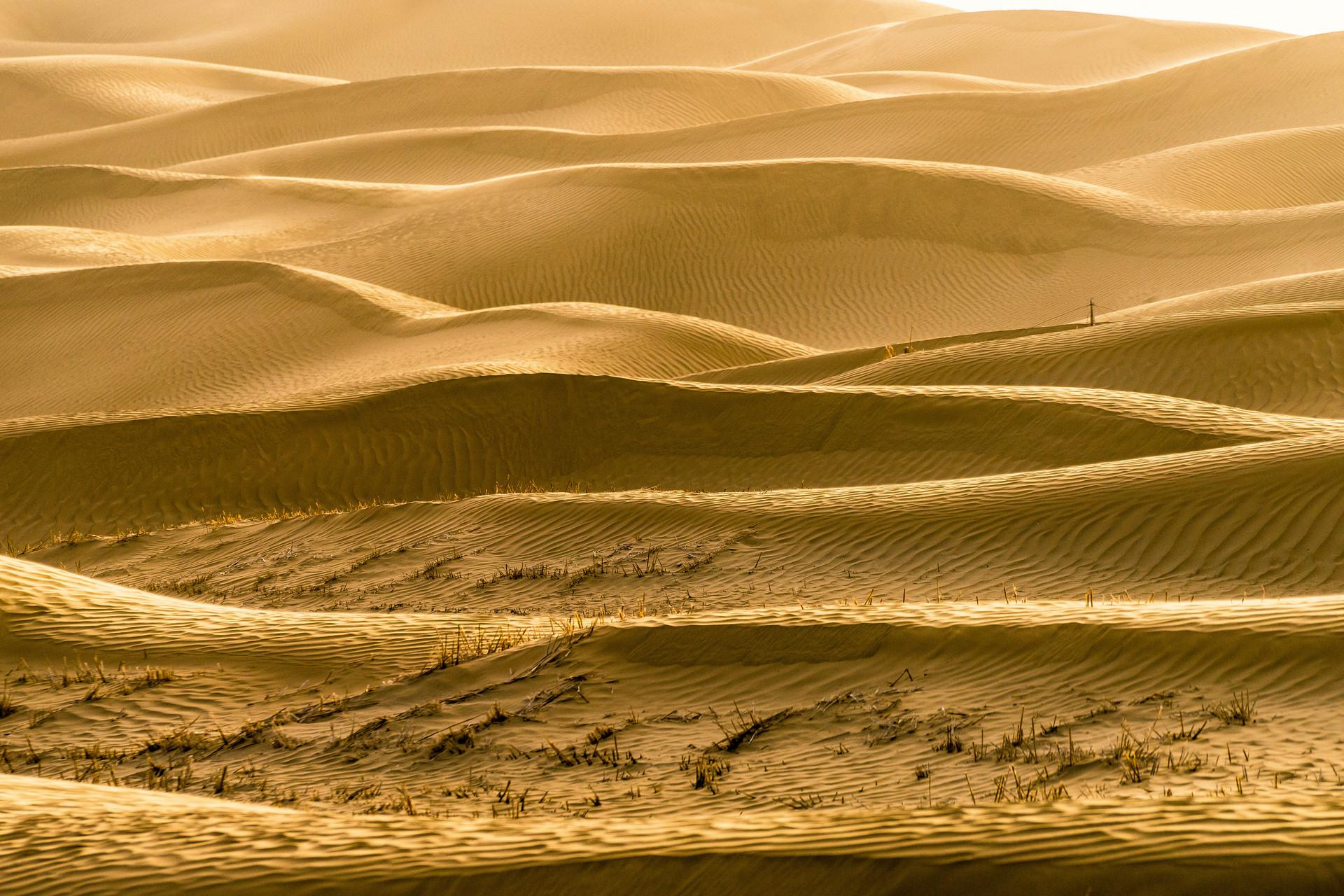 世界第二大流动沙漠开始绿化,中国做出的这些努力,不可忽视