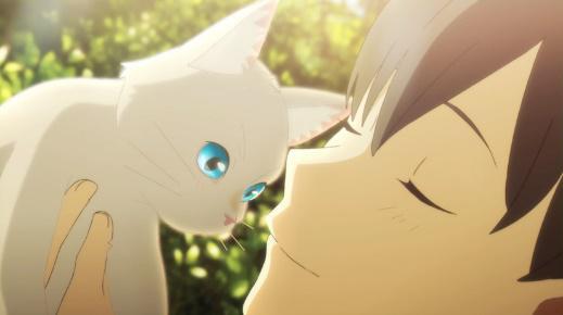 想哭的我戴上了猫的面具