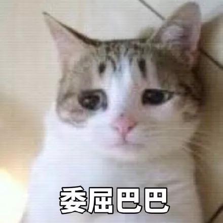 """""""小雏菊裙""""太洋气了吧! 谁穿谁时髦!"""