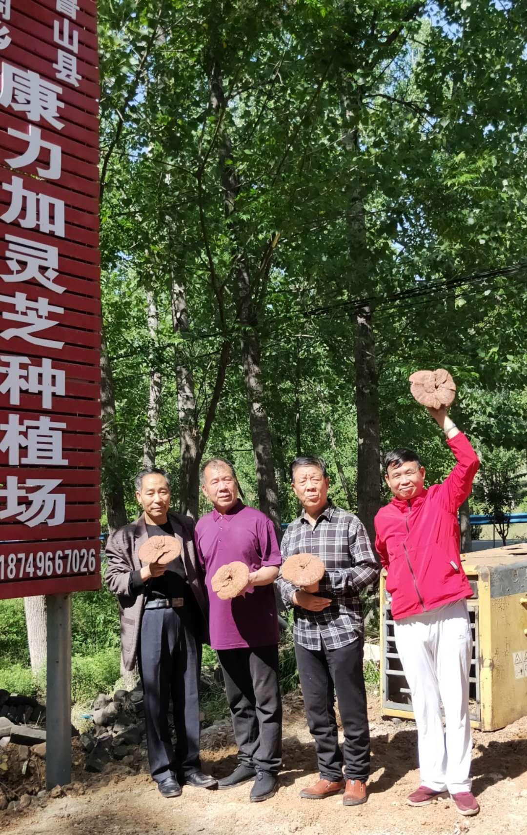 中国好人汪太银助力残疾人企业致富