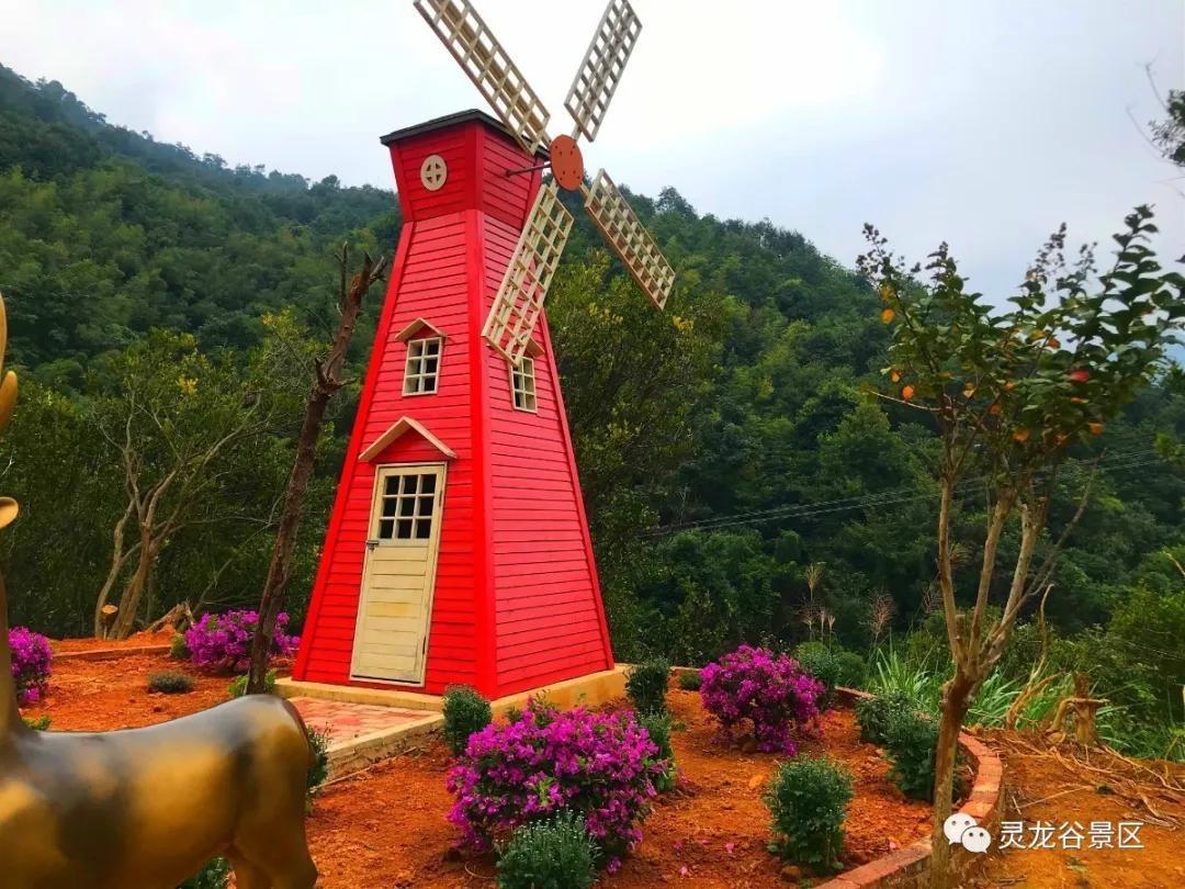 【荷兰风车的主要用途是()A.属于装饰性建筑,增加旅游收入B....
