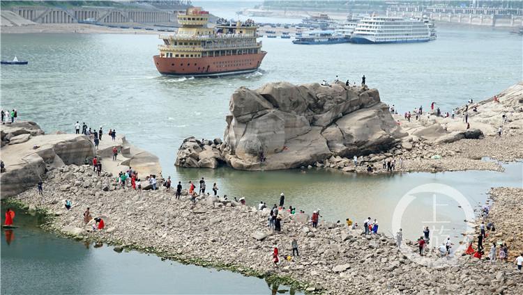 重庆千年神龟奇石露出江面 背后有故事......