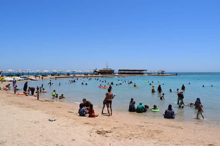 埃及gdp_惠誉表示,疫情冲击将影响埃及的GDP增长