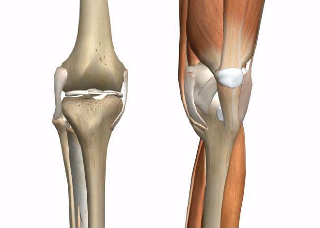 膝盖疼痛怎么办?附 3 个瑜伽体式保养膝盖更年轻!