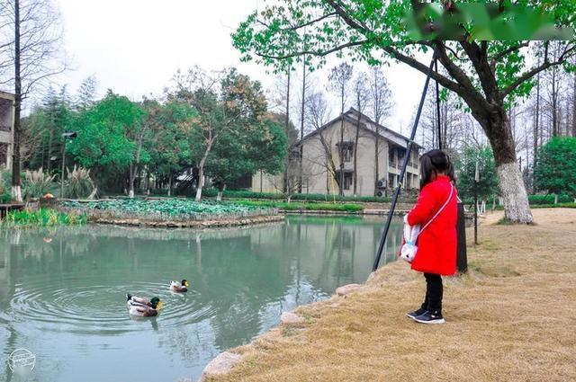 """【亲子游】造访乌村,探访乌镇,与娃""""教学相长式""""的旅行get!"""