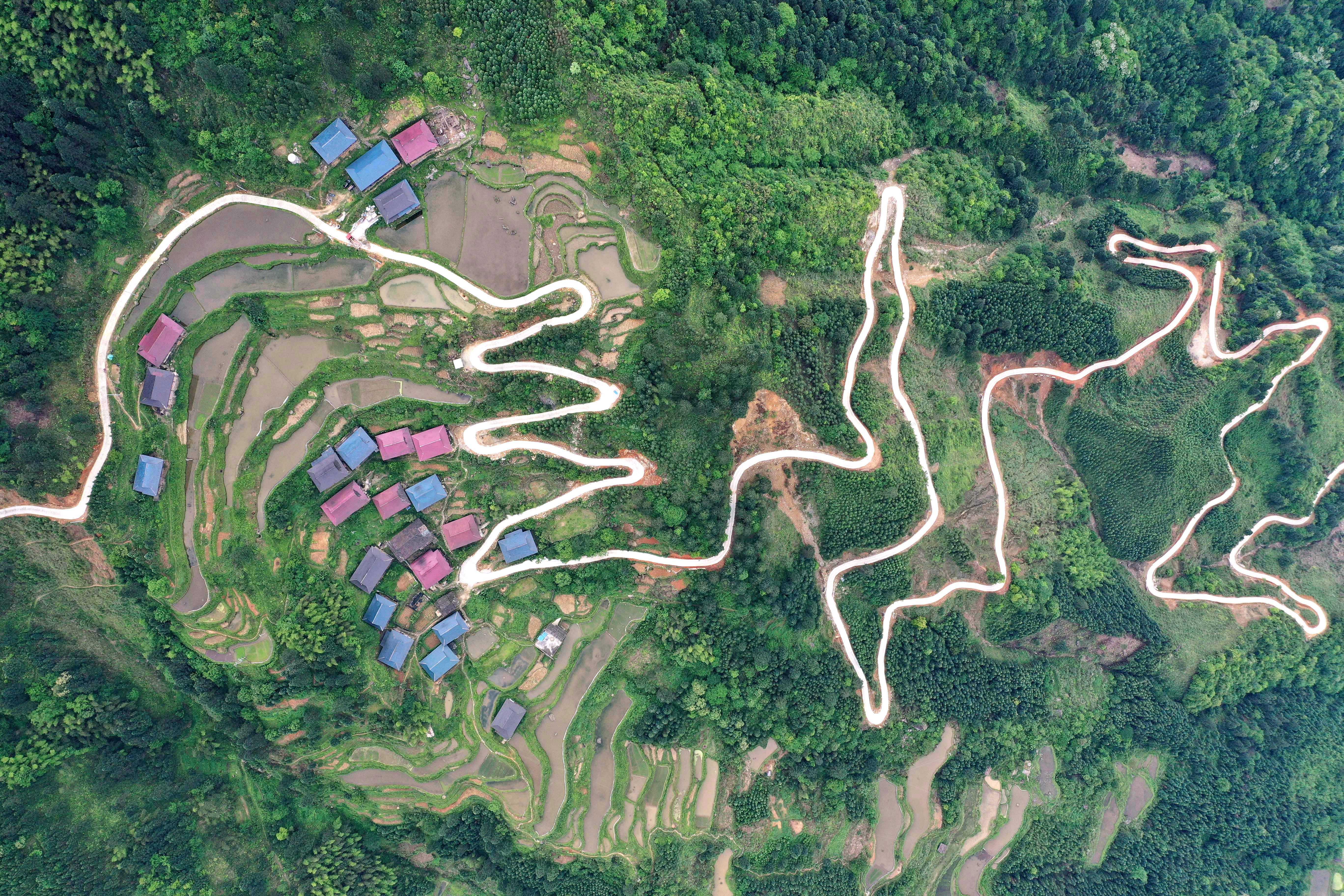 山西省永和县雨林村人口多少_热带雨林