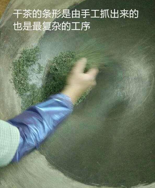 信阳毛尖春茶开采 浉河港官网尝鲜上市最珍贵头茶