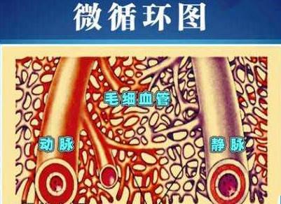 百病之源微循环障碍是血液理化性质的改变,使管腔狭窄,血液流速或图片