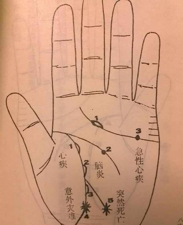 手相九大线纹指的是什么,他们分别有何作用