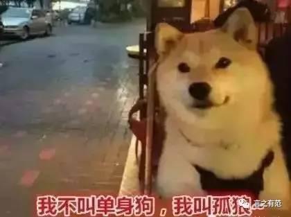 是谁说2亿单身狗拖累了中国经济?