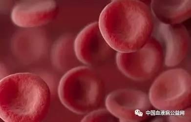 腹部有痣图解_肝脏血供,肝脏的血液循环图解,肝脏血管_大山谷图库
