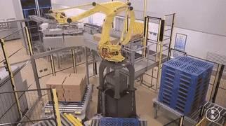 分拣机器人具有带吸盘的抓手,一点也不会损坏脆弱的速冻饺子包装.图片