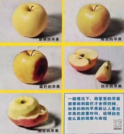 """切开的水果:可以看到水果的水粉,还有苹果籽,记得要区分""""皮,肉,籽""""的图片"""