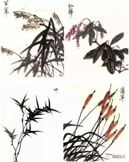 花鸟画技法教程:鹭的写意画法,国画苍鹭和芦苇的画法图片