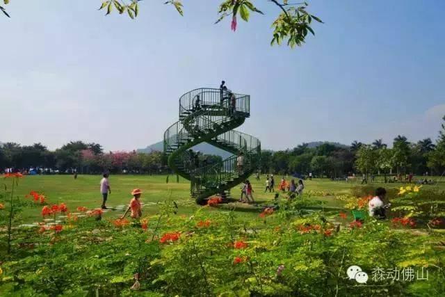速看!容桂周边竟隐藏8大森林公园,景美人少还免费!