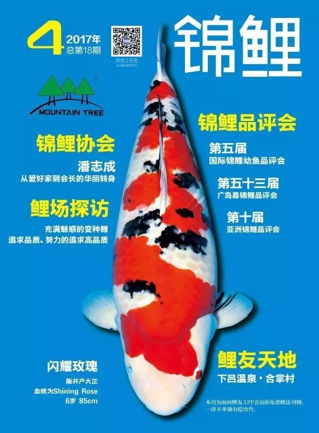 月刊锦鲤 第4期内容简介 炎热的夏天正在悄然离去,清爽的秋天悄无声