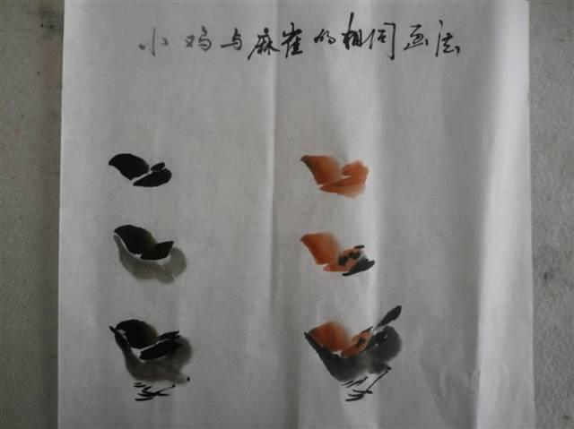 我们看看小鸡和麻雀对比,用笔是一样的,我们再看看麻雀与小燕子的对比